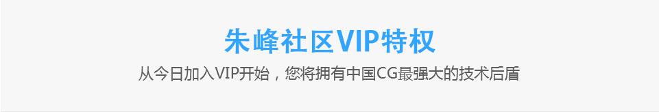 VIP介绍1